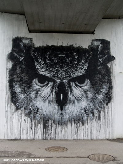 Owl Under the Overpass