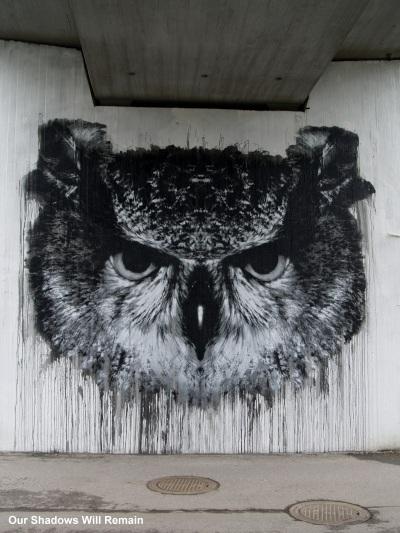 Owl Under the Overpass