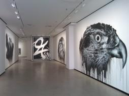 Gallery Heiino