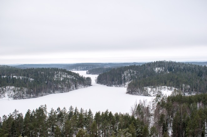 Repovesi National Park in Winter