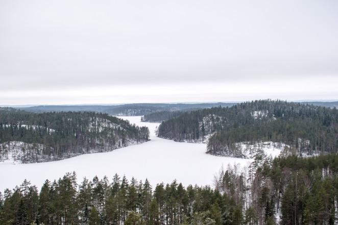Repovesi National Park in Winter